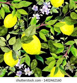 Lemon fruits on citrus branches, green leaves, flowers. Repeating natural pattern on black background. Hand painted water color