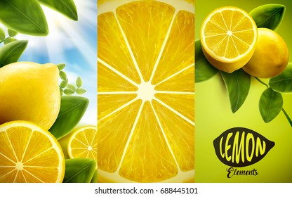 Lemon and green leaves elements, natural and refreshing fruit in orchard and closeup look at flesh, 3d illustration