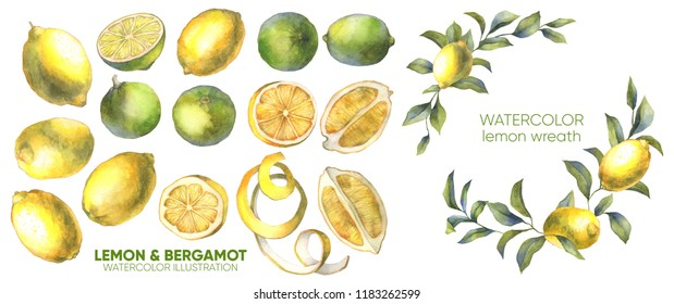 Lemon illustration. Lemon slice. Watercolor fruits.