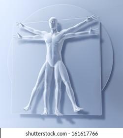 Leonardo Da Vinci's Vitruvian Man, Homo Quadratus, 3d rendering