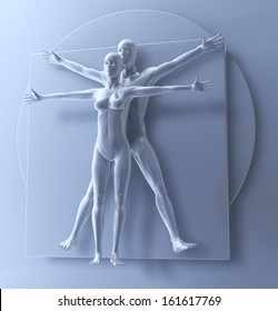 Leonardo Da Vinci's Vitruvian Man And Woman, Homo Quadratus as a Couple, 3d rendering