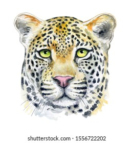 Leopard muzzle isolated on white background. Watercolor. Illustration. Template. Hand drawing. Close-up. Clip art. Hand painted.