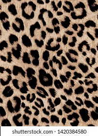 leopard pattern semaless wild fashion