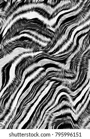 Leopard and zebra pattern.. Zebra print.. Seamless pattern