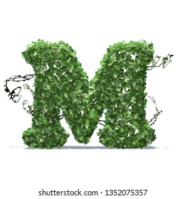 Letter M created of green ivy leaves with shadow on the floor - isolated on a white background - 3D illustration