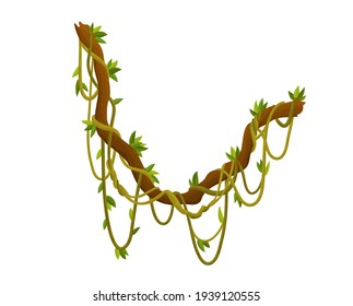 Liana or jungle plant or vine wild greenery winding branches  stem with leaves isolated decorative elements tropical vines rainforest flora and exotic botany wild curling species and twigs