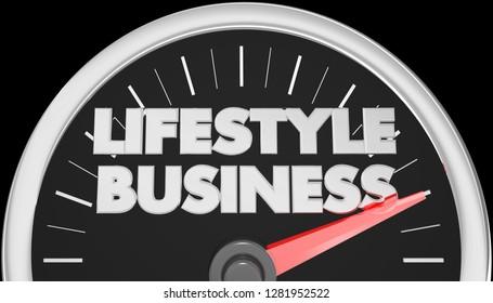 Lifestyle Business Speedometer Words 3d Illustration