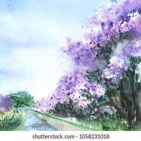 A lilac bush of lilacs grow on the bank of the canal against a clear blue sky gradient from light blue to white. Hand drawn on a wet paper real watercolor Illustration.