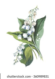 lily of the valley watercolor