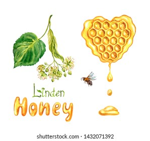 """Linden honey in honeycombs, the inscription """"Linden honey"""", a branch of a blossoming linden and a bee, watercolor painting on a white background. isolated."""
