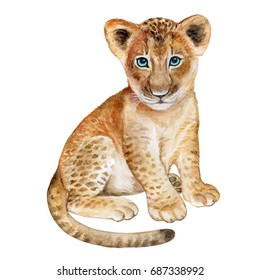Lion baby watercolor isolated on white background. Watercolor. Illustration. Image. Picture.