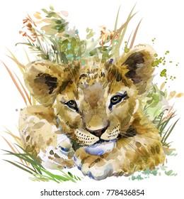 lion cub. wild animals watercolor illustration