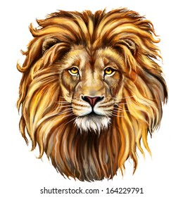 Lion Head Images Stock Photos Vectors Shutterstock Inspired by the lion king (makeup scar lion king) movie and wildlife. https www shutterstock com image illustration lion head digital painting front 164229791