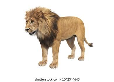 Lion orange clear fur, big mane. 3D rendering