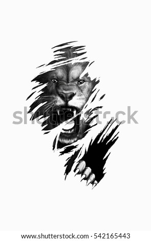 Lion Tattoo Sketch Stock Illustration Royalty Free Stock