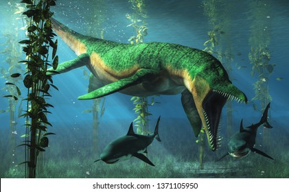 Liopleurodon was a pliosaur and apex predator of the Jurassic seas. Here the green sea monster hunts sharks in shallow waters in a kelp forest. 3D Rendering