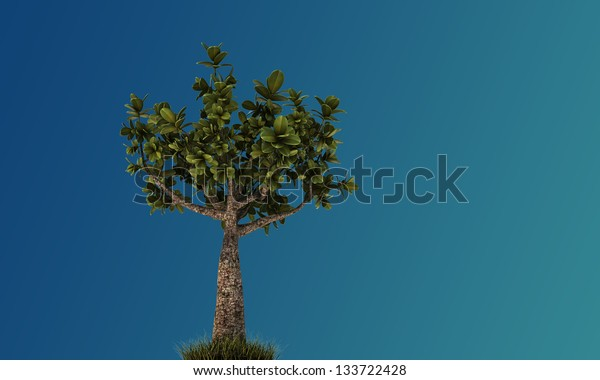 little bonsai isolated on blue background