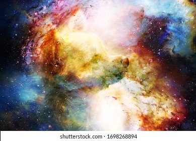 little charming adorable chihuahua puppy on abstract structured space background.