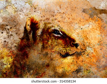 Little lion cub head. animal painting on vintage paper, abstract color background with spots and crackle