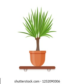 Living room design decoration element. Houseplant in a pot in flat style. Indoor gerb on shelf isolated on a white background.