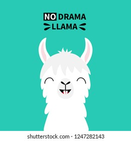 Llama alpaca animal face neck, tooth. No drama. Cute cartoon funny kawaii smiling character. Childish baby collection. T-shirt, greeting card, poster template print Flat design Green background