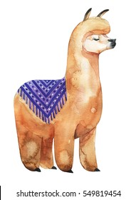 Llama or alpaca hand-drawn watercolor illustration. Cute mammal animal painting with decorative ornaments.