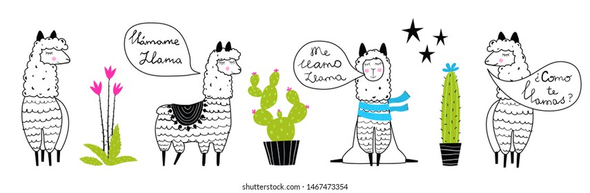 """Llamas and cactus talking Spanish """"What is your name?"""" """"My name is Llama"""" outline set hand drawn trendy cartoon design. Isolated llama and potted flowers cactus succulents outlined and colored."""