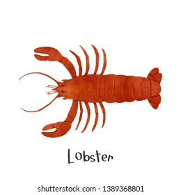 Lobster sea life animal realistic illustration