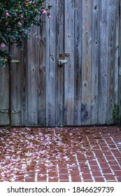 Locked wooden gate above brick walkway strewn with many petals from nearby magnolia tree, with digital oil-painting effect. 3D rendering.