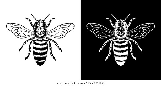 logo for honey, detailed wasp, bee