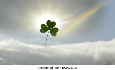 lone shamrock in mist with rainbow