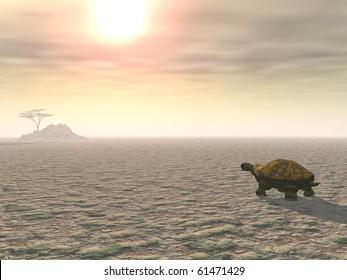 A lone tortoise plods across a parched desert landscape under a blazing sun, toward a distant tree on a hill.