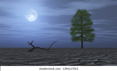 Lonely tree in dry wasteland at night, A tree growing on cracked ground. Full moon in the sky, Affected of global warming made climate change.Dry waterless wasteland. Dead tree stub, 3D render