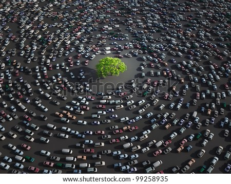 lonely tree surrounded by cars