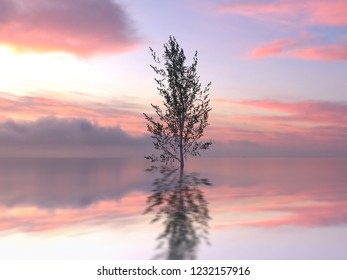 lonely tree in a water, 3d illustration