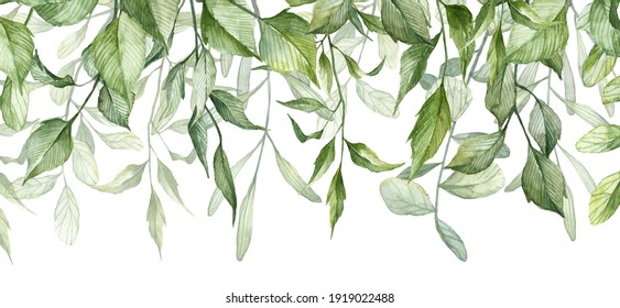 Long seamless pattern with hanging plant stem isolated on white background. Watercolor detailed realistic green leaves