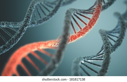 Long structure of the DNA double helix in depth of view.