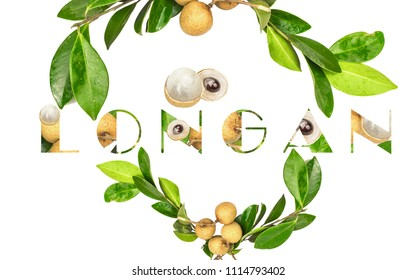 Longan. fresh longan on white background.Embed text in longan.
