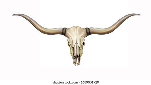 longhorn skull with horns, symbol of the state of Texas, isolated image on white background