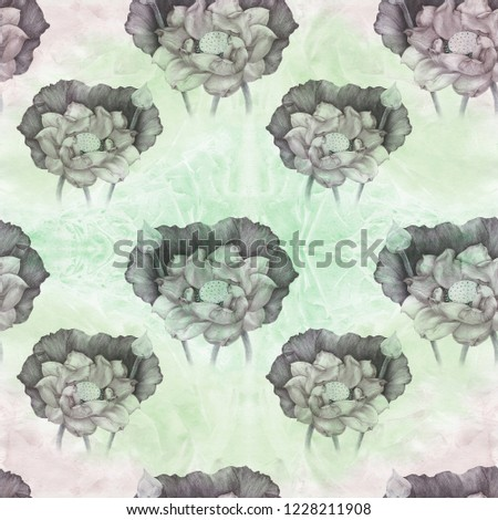 Lotus Flowers Buds On Watercolor Background Stock Illustration