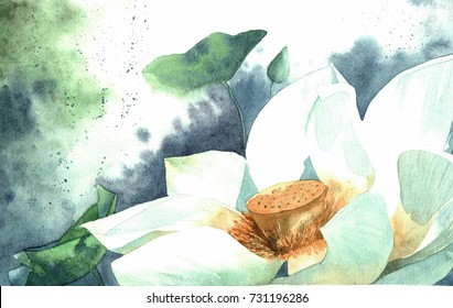 Lotus watercolor, Botanical set