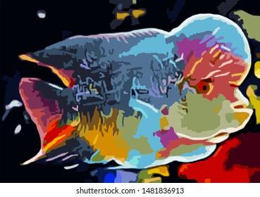 Louhan fish, beautiful Louhan fish, enchanting Louhan fish