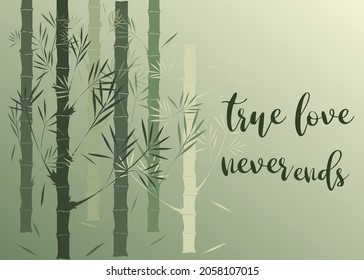 Love card design with bamboo forest