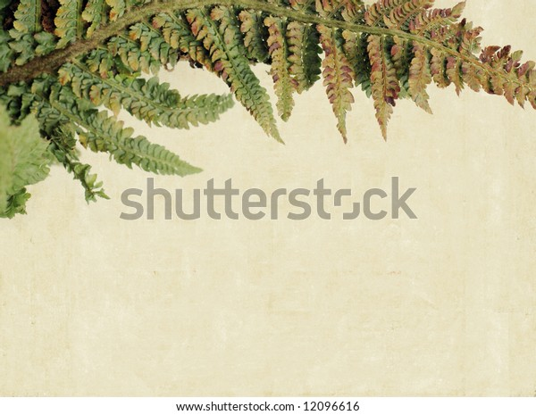 lovely background image with interesting texture, close-up of leaves and plenty of space for text