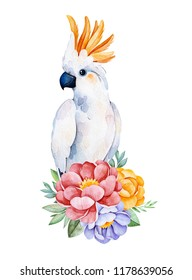 Lovely bouquet with peony,rose,leaves,flowers,branches and cute cockatoo.Watercolor bouquets for your design.Perfect for wedding,invitations,blogs,template card,Birthday,baby shower,greeting,logos etc