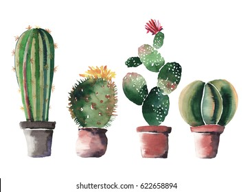Lovely cute graphic wonderful abstract beautiful bright summer four cacti in red and brown clay pots with flowers watercolor hand illustration