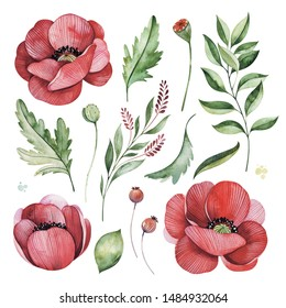 Lovely floral set with poppies flowers,branches,green,fern leaves,berries.14 watercolor elements.Perfect for wedding,invitations,greeting cards,Birthday,bouquets,print,wreath,wallpapers etc