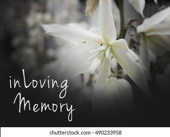 500 In Loving Memory Pictures Royalty Free Images Stock Photos