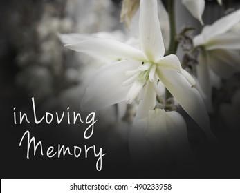 in Loving Memory Funeral Image