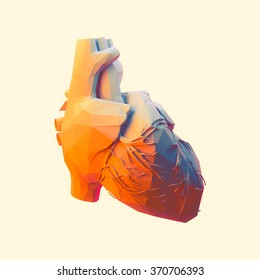 Low poly human heart